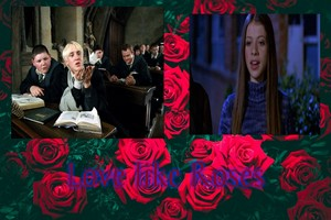 tình yêu like hoa hồng