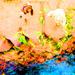 Martha Kaply - karen-gillan icon