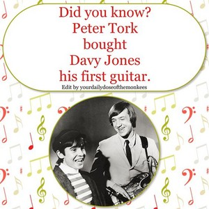 Monkees fact