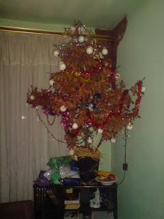 Badnjak (Orthodox Christmas Oak Tree)