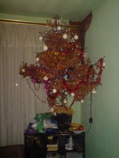 Badnjak (Orthodox クリスマス Oak Tree)