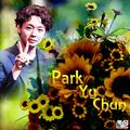 Park Yu Chun / Park Yoo Chun - micky-yoo-chun fan art