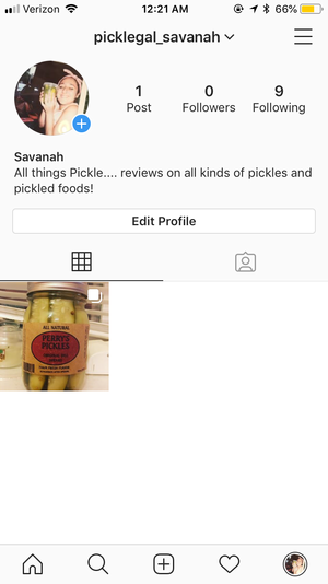 salamoia, pickle Instagram