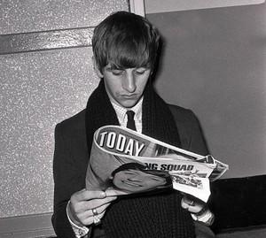 Ringo relaxing