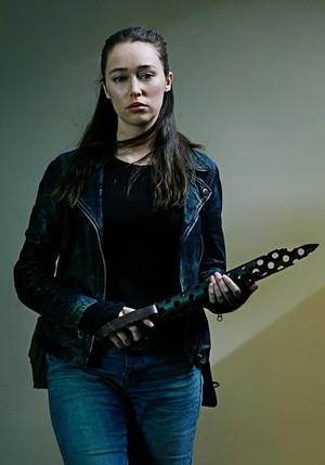 Season 5 Portrait - Alicia