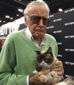 Stan Lee and Tardar Sauce a.k.a. Grumpy Cat. Rest In Peace both of you - stan-lee photo