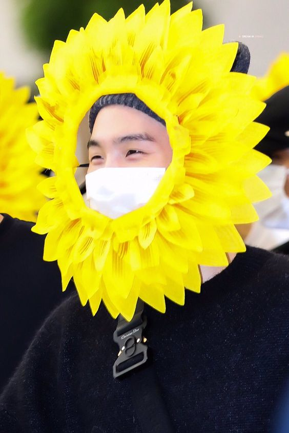Sunflower Suga
