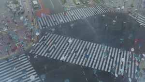 Tenki no Ko Teaser Trailer 2 Screencaps