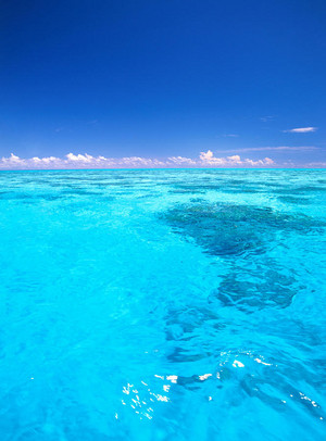 Tropical Clear Blue Water
