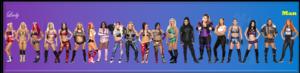 WWE Women Femininity