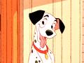 Walt Disney Screencaps – Pongo - walt-disney-characters photo
