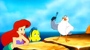 Walt Disney Screencaps – Princess Ariel, cá bơn, bồ câu & Scuttle