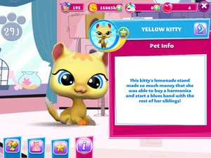 Yellow Kitty