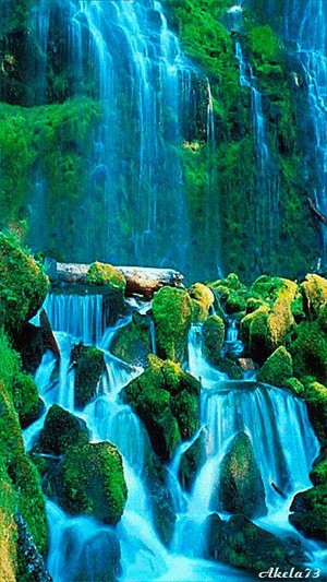 beautiful waterfall💖🌸