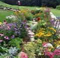 Flower Garden - cherl12345-tamara photo