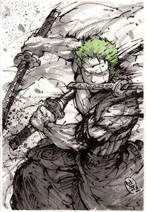 *Roronoa Zoro : One Piece*