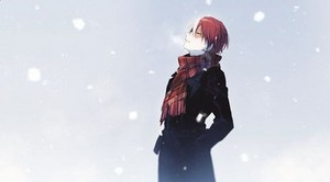 *Shoto Todoroki : My Hero Academia*