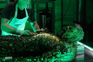 Swamp Thing - Episode 1.09 - The Anatomy Lesson - Promotional fotos