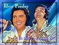 42nd anniversary!  - elvis-presley fan art