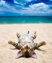 A siku At The beach, pwani