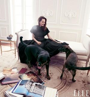 Angelina Jolie ~ Elle ~ September 2019