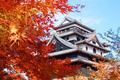 Autumn In Japan - josepinejackson photo