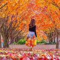 Autumn - josepinejackson photo