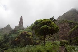 Coculi, Cape Verde