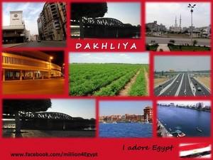 DAKHLIYA IN EGYPT