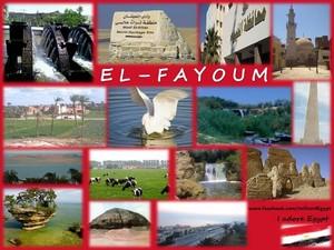 EL FAYOUM IN EGYPT