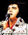 Elvis Art - elvis-presley fan art