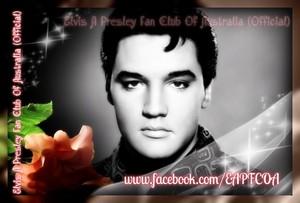 Elvis Фан creation