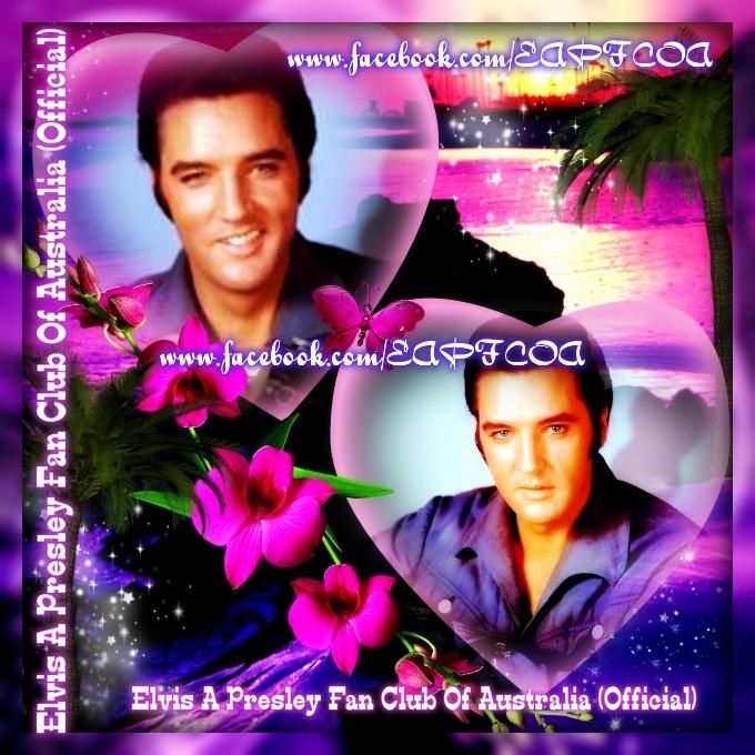 Elvis creation
