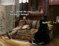 Just regular sufferings    - nyanpire photo