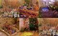 My photo  - sam-sparro photo