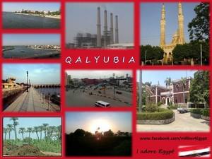 QALYUBIA IN EGYPT