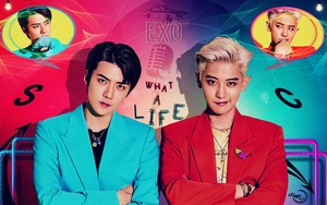exo CHANYEOL X SEHUN _ WHAT A LIFE #WALLPAPER