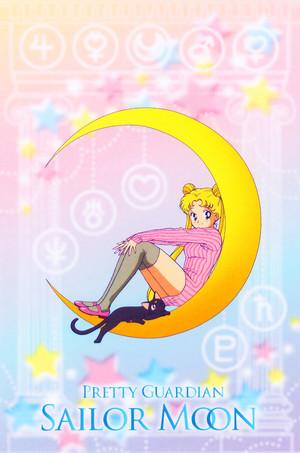 Sailor Moon - Usagi n Luna