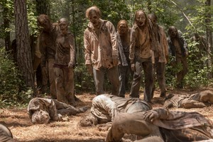 Season 10 Still ~ Walkers
