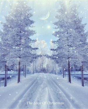 Snow landscapes❄️ ☃️