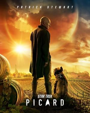 bintang Trek: Picard