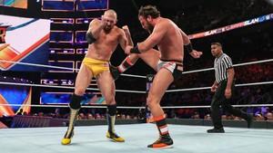 SummerSlam 2019 ~ Drew Gulak vs Oney Lorcan