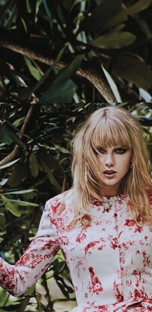 Taylor swift💖🌹