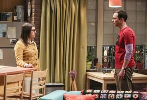 "The Big Bang Theory ~ 11x15 ""The Novelization Correlation"""