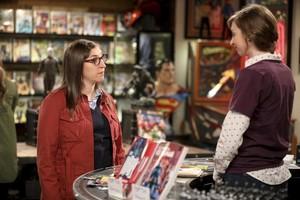 "The Big Bang Theory ~ 11x21 ""The Comet Polarization"""