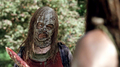 Thora Birch as Gamma - the-walking-dead photo