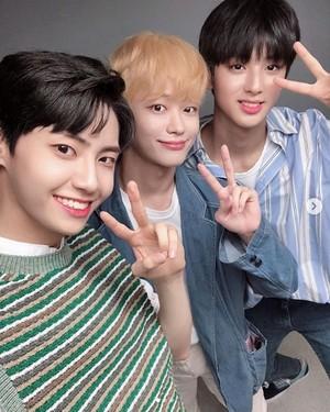 Wei,Mingyu&Sejin♥