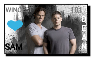 Wincest 101: Sam + Dean = Love