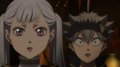 asta and noelle - black-clover photo