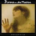 i m not calling you a liar - florence-the-machine fan art